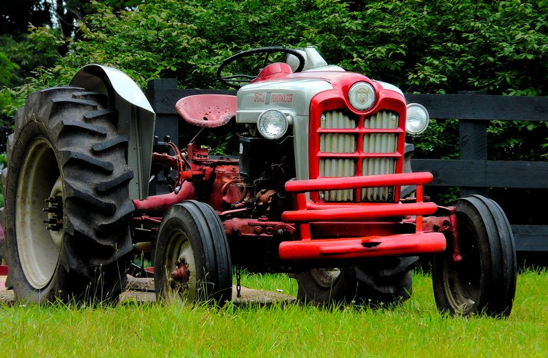 Tractor, A walk in the woods on my birthday - by Tony Karp